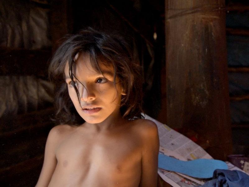 Le projet « Les enfants perdus du delta de Bucarest » récompensé
